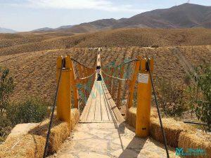 مزرعه خورشید - پل معلق کابلی